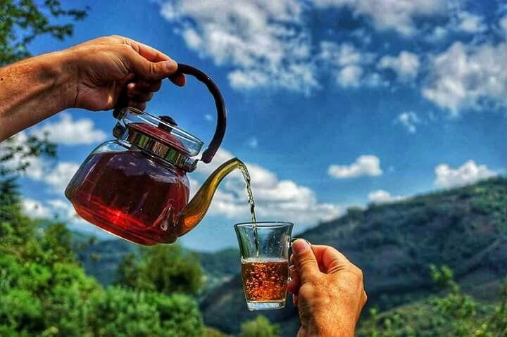 Karadeniz -Turkiye #yayla #çay #huzur#trabzon#karadeniz#turkey