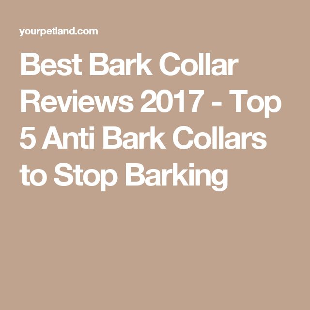 Best Bark Collar Reviews 2017 - Top 5 Anti Bark Collars to Stop Barking