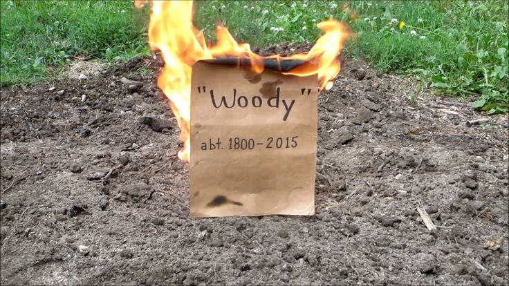 Easy way to remove tree stumps part 3 eulogy to stumpy