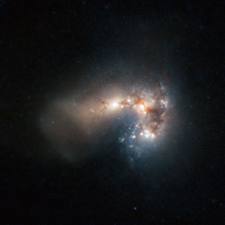 Haro 11 : Blue Compact Galaxy - Astronomers have identified over 200 separate clusters of young, massive stars, most less than 10 million years old in this irregular galaxy. It is thought Haro 11 is the result of a merger of a galaxy rich in stars and one gas-rich. It is about 300 million light-years away in the constellation Sculptor - Image :© ESO/ESA/NASA