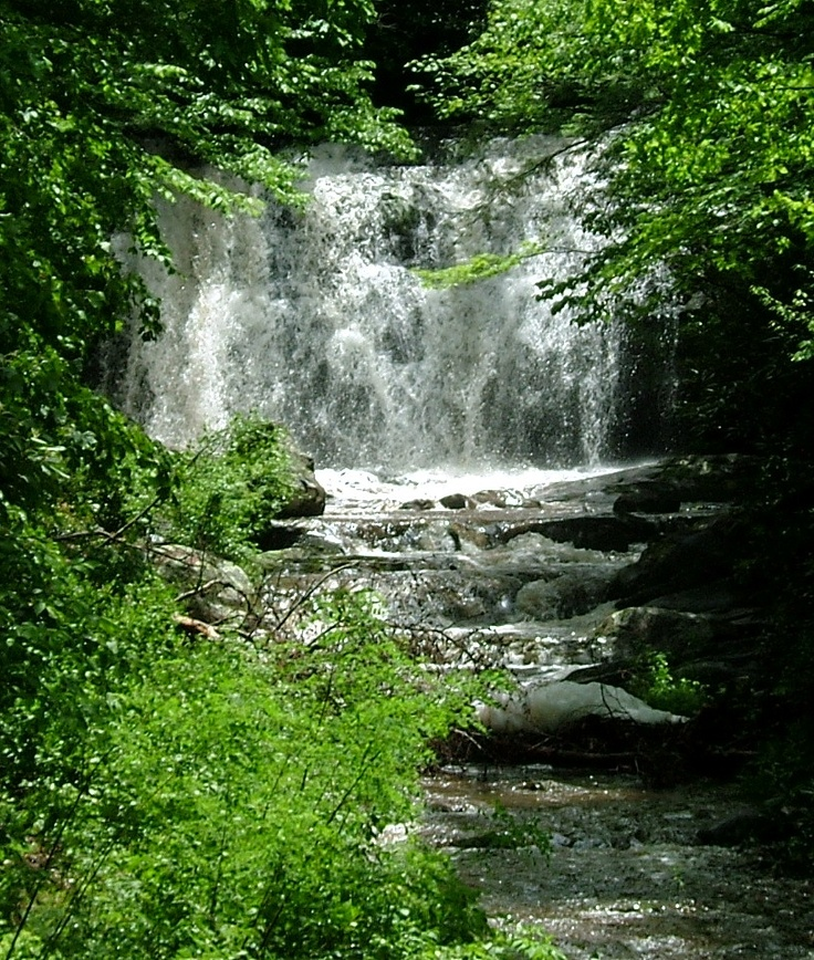 17 Best Images About Great Smoky Mtns NP