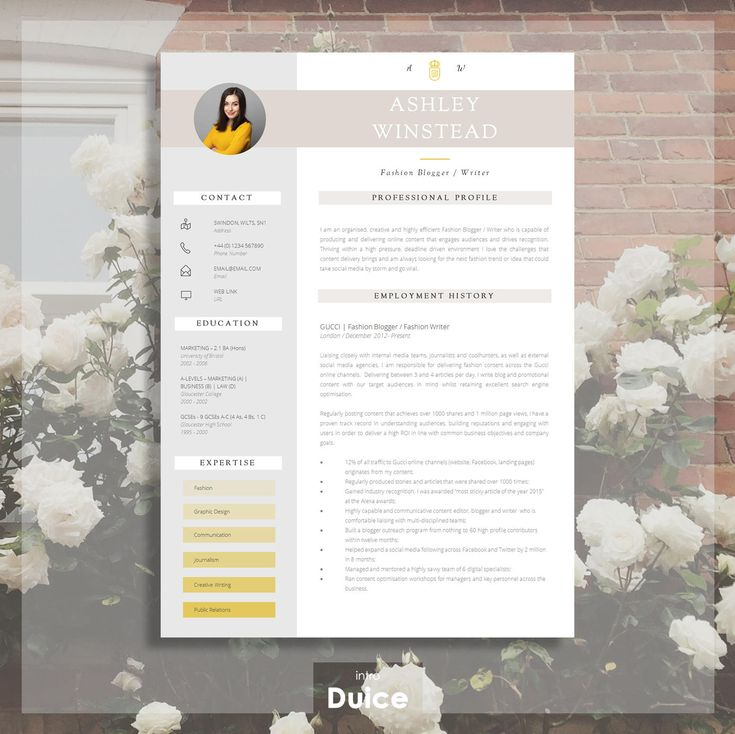 Resume Template Creative Resume Template Two Page