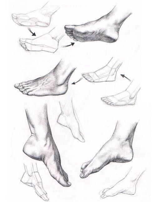 Aprender a dibujar manos y pies | El Dibujante                                                                                                                                                                                 Más