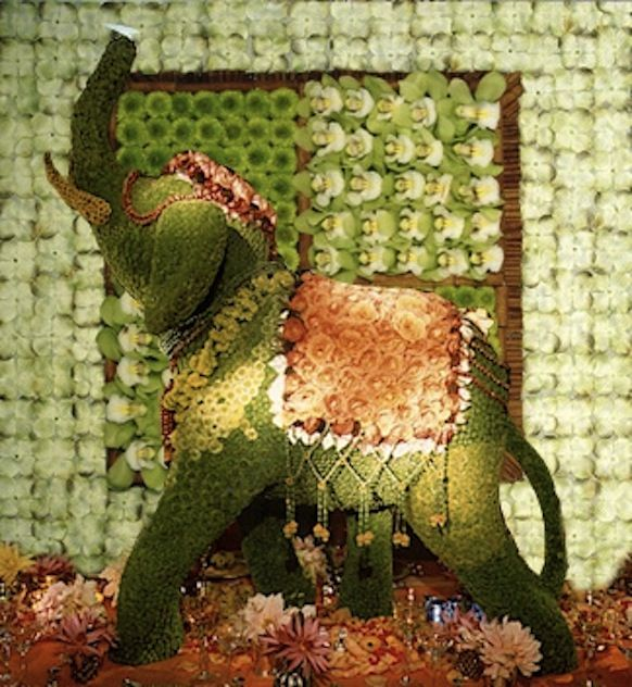 Incredible Elephant Made Of Flowers Floral Art