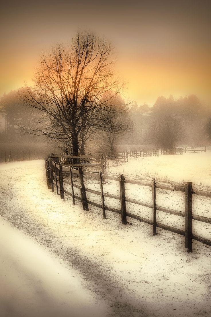Winter's Warmth by Jenny Woodward / 500px (Derbyshire, England)