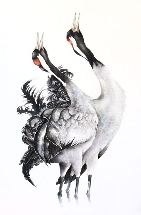 ARTFINDER:  COMMON CRANES bird, birds, animals, ... by Karolina Kijak - Original watercolors of Common Cranes Paper 300g,  100% cotton size 50x74cm  Follow me on facebook: https://www.facebook.com/kijakwatercolors