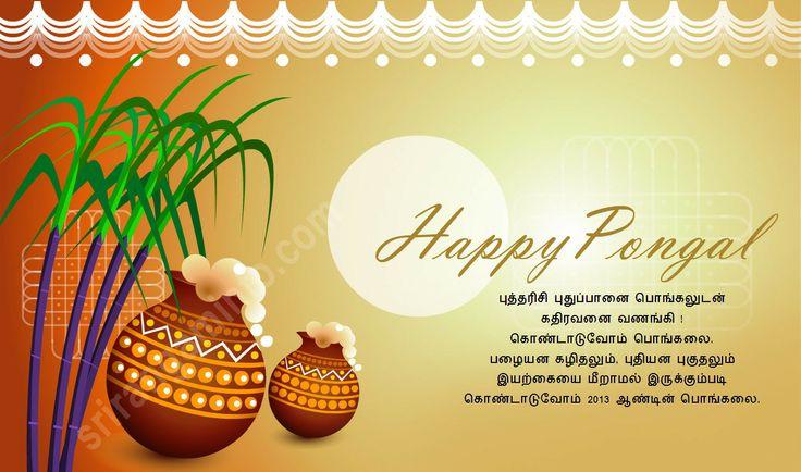 pongal greetings pics http://purplewallpapers.com/pongal-greetings-pics/