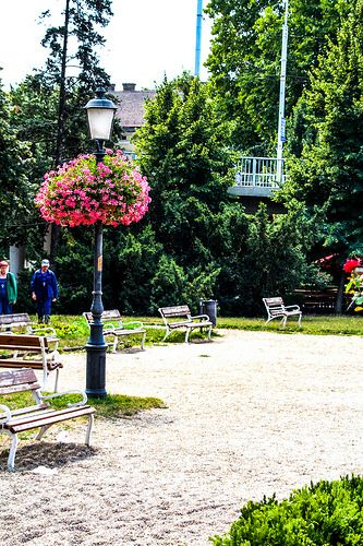 Lamp Post with flowers | by Juhasz_Attila
