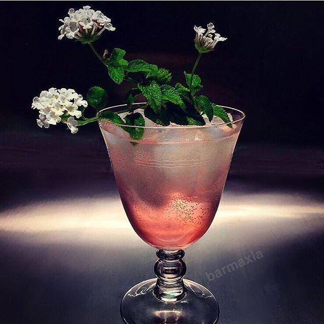 FLEUR-DE-LIS GIN & TONIC G'Vine Floraison Gin, Suze Liqueur, Rose Syrup, Lime, Indi Tonic Water