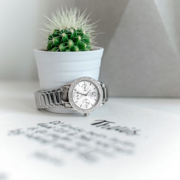 Photograph some watches with a cactus and a quote from Suka Amsterdam