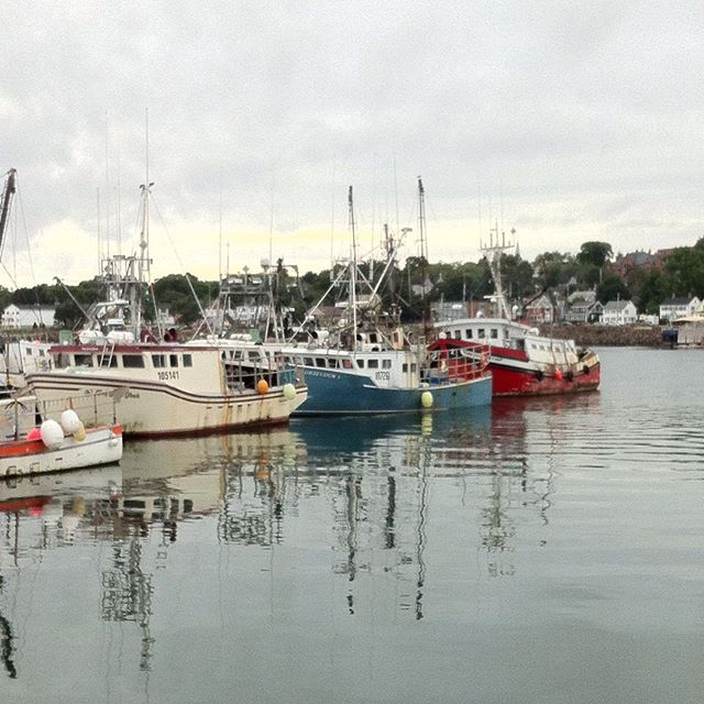 Digby is a small town with a big reputation! Explore it on the FerryTrail. Photo thanks to dianatheresa01.
