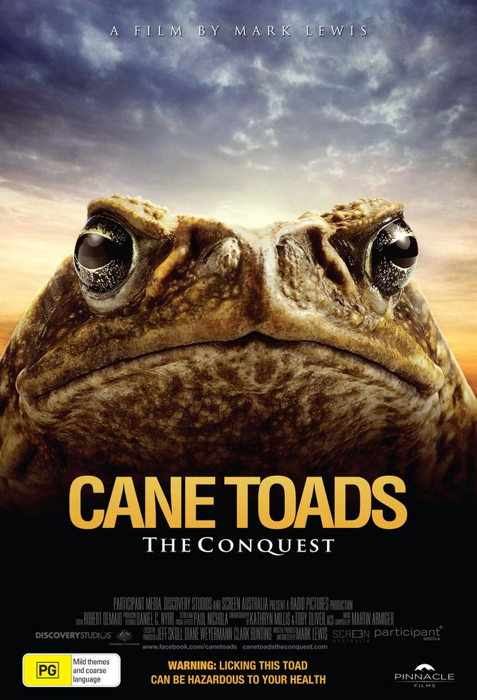 Cane toad movie says put aside prejudice - in 3D