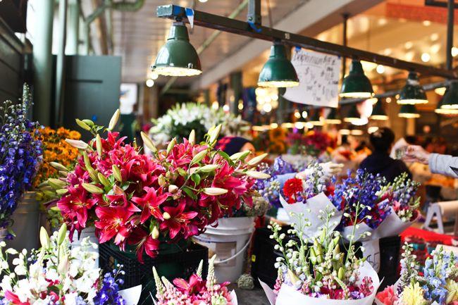 Por uma vida regada a mais flores e amores! #colours #life #happy