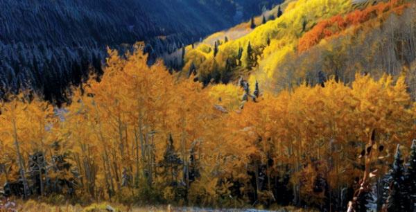 Transcriptional Regulation: Chromatin and RNA Polymerase II  Oct. 4 – 8 at the Snowbird Ski and Summer Resort (Snowbird, Utah)   http://www.asbmb.org/asbmbtoday/asbmbtoday_article.aspx?id=15921