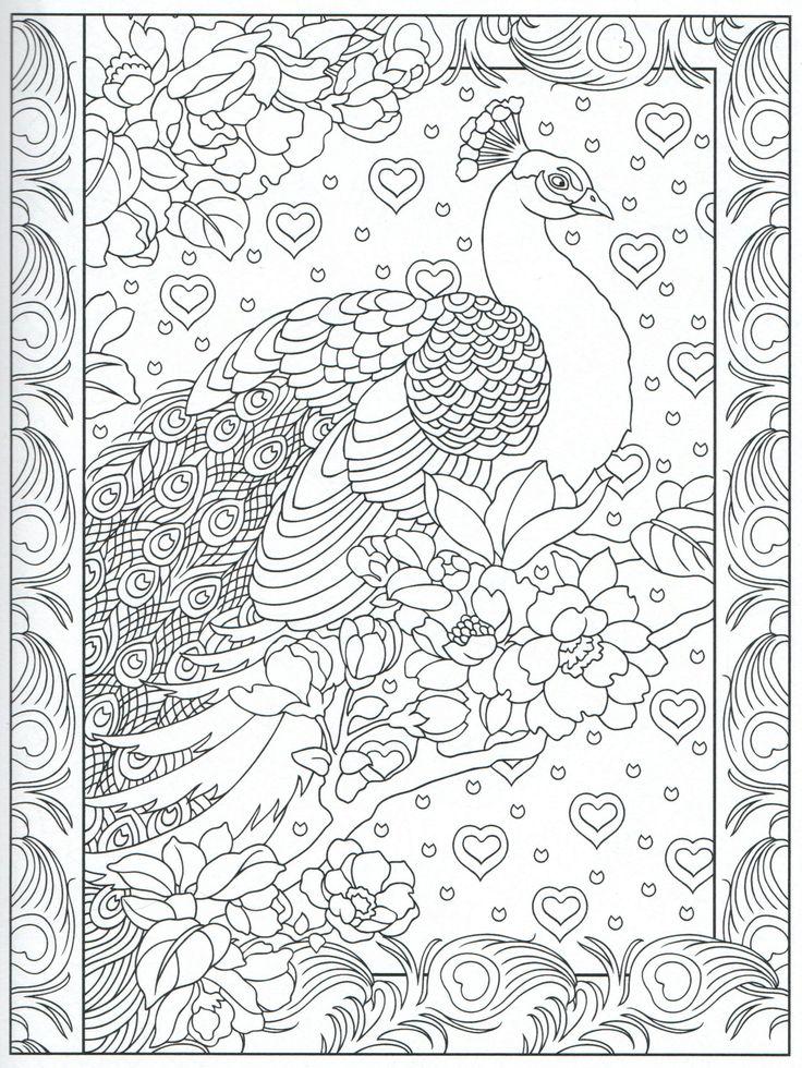 Peacock Feather Coloring pages colouring adult detailed advanced printable Kleuren voor volwassenen coloriage pour adulte anti-stress kleurplaat voor volwassenen Line Art Black and White