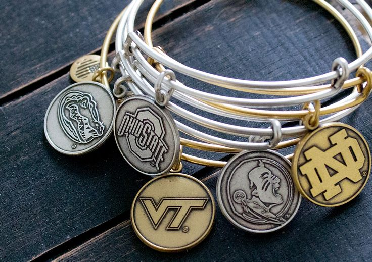 Introducing our College Brand Ambassador Program. If you're a rising sophomore or junior at one of the schools below and love ALEX AND ANI then apply by clicking this pin! Florida State University, Michigan State University, Ohio State University, Penn State University, University of Alabama, University of Florida, University of Kentucky, University of Michigan, University of North Carolina, University of Notre Dame, University of Tennessee, Virginia Tech University, and West Virginia…
