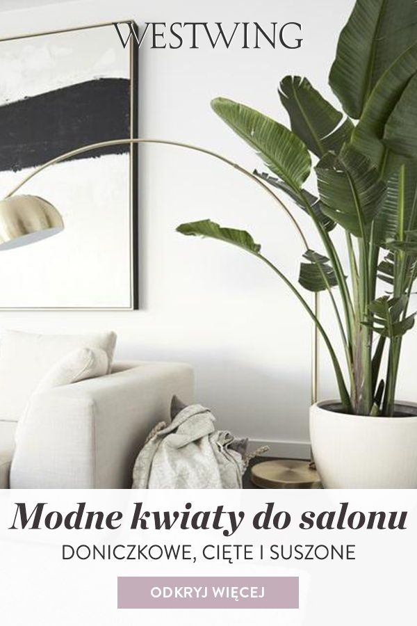 Modne Kwiaty Do Salonu Doniczkowe Ciete I Suszone Westwing Art Deco Interior Living Room Rugs In Living Room Lounge Areas
