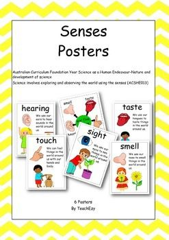 6 Posters - A3 size1. Sight2. Hearing3. Smell4. Taste5. Touch6. Our 5 sensesAustralian Curriculum Foundation Year Science as a Human Endeavour-Nature and development of scienceScience involves exploring and observing the world using the senses (ACSHE013)Please download preview to see full resource