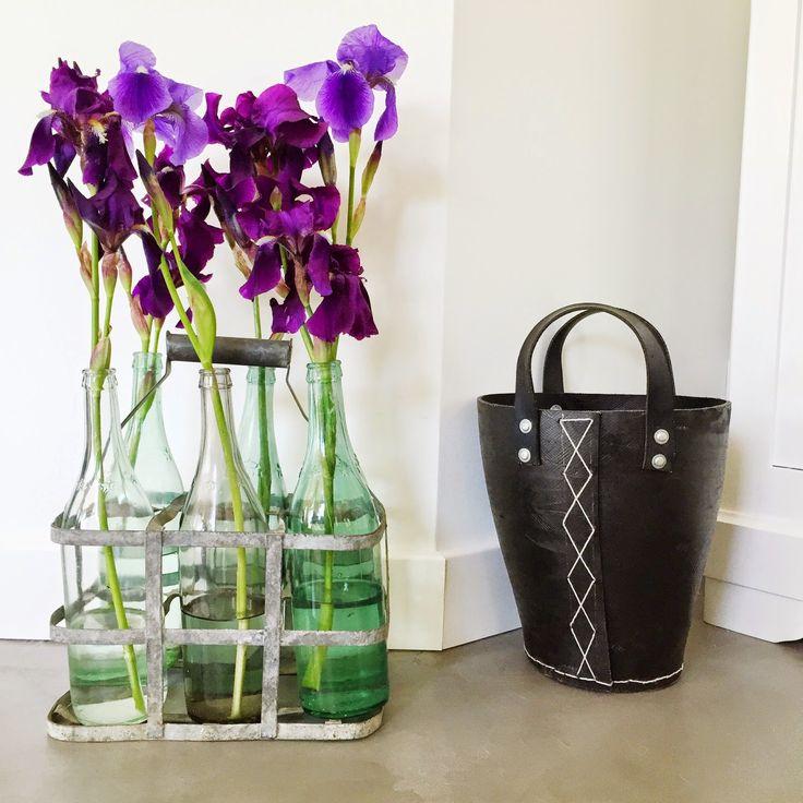 Iris, anciennes bouteilles et porte bouteilles