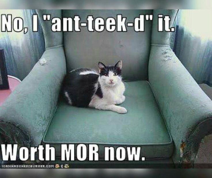"No, I ""ant-teek-ed"" it. Worth MOR now. #FridayFunny #Vampedantiques"