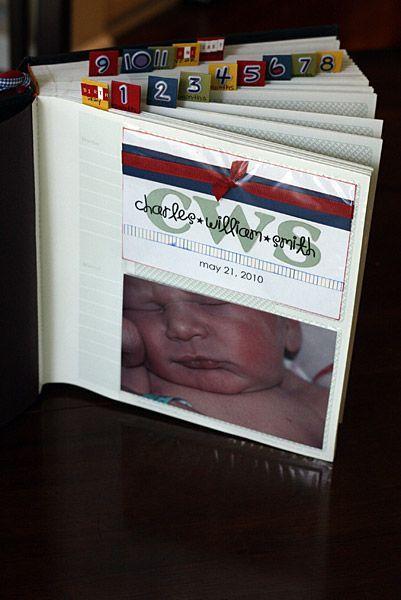 DIY First Year Album Photos Milestones Memory Book Etc