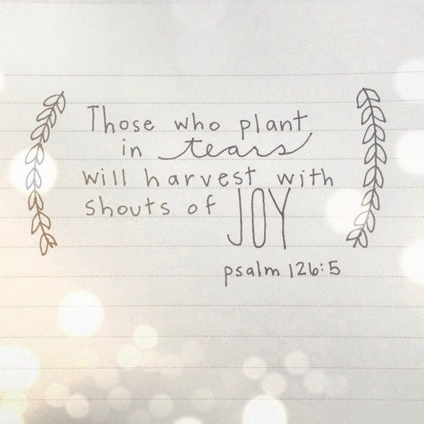 spiritualinspiration:  The Scripture talks about seasons of sowing and reaping in your life. In Psalms, it talks about sowing in tears and r...