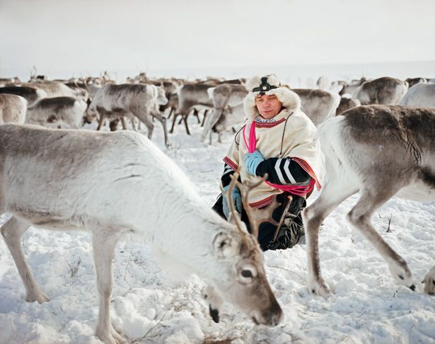 Never been above the Arctic Circle, but would like to visit the world of the Sami.