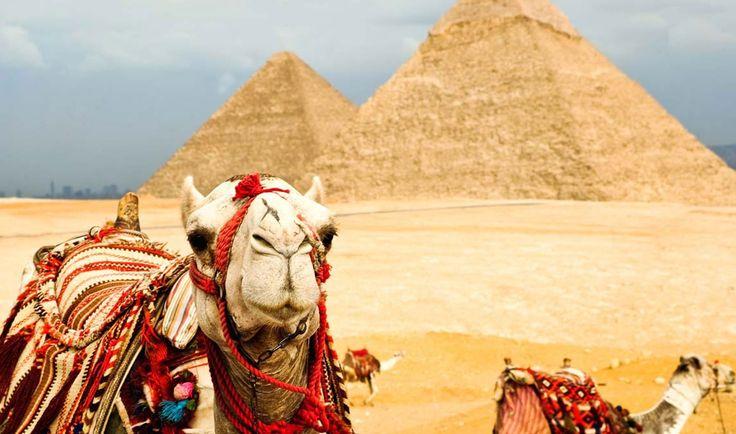 Египет увеличивает стоимость въездных виз в 2,5 раза