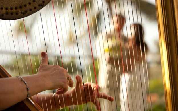 Classical harp for your ceremony www.classicalmusician.com.au