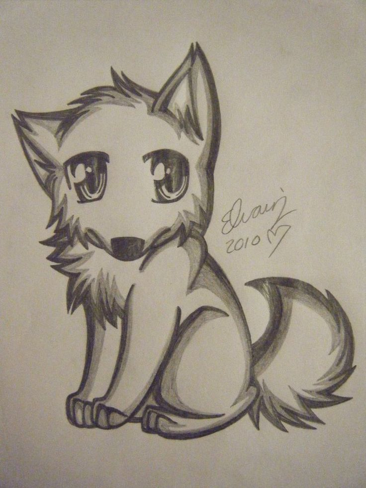 Drawings of wolves wolf drawing 4 by animefan1863 on for Good sketches to draw