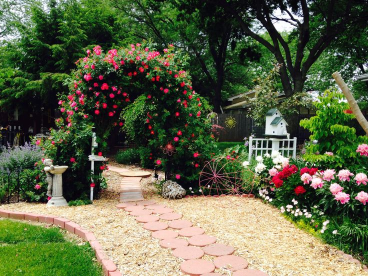 Front Yard Cottage Garden John Cabot Climbing Roses: 93 Best GARDEN---MY ILLINOIS FLOWERS Images On Pinterest
