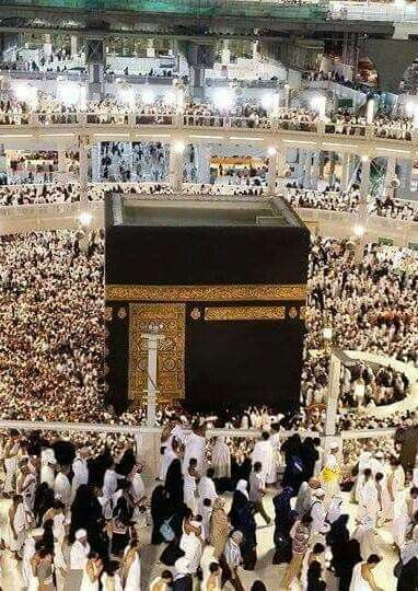 DesertRose,;,Allah is the Greatest,;,