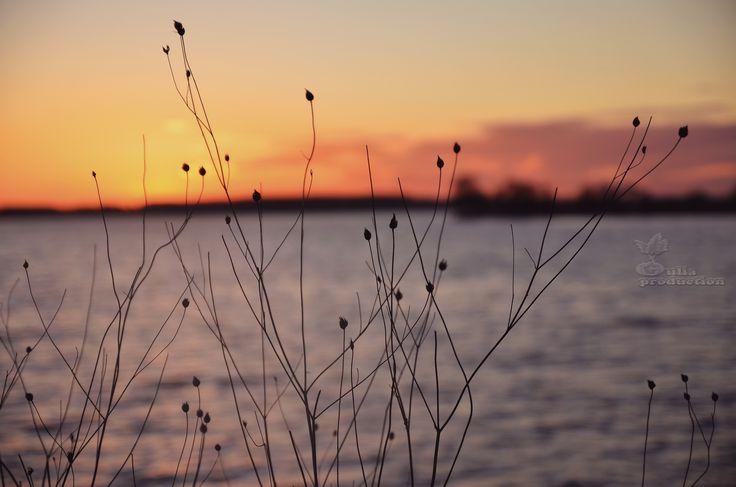 Chase the sunset Foto: Gulia production