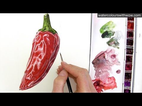▶ How to paint a realistic chili pepper in watercolor with Anna Mason