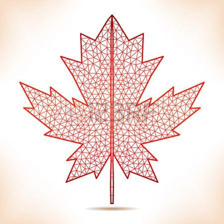 Geometric interpretation of the red maple leaf.