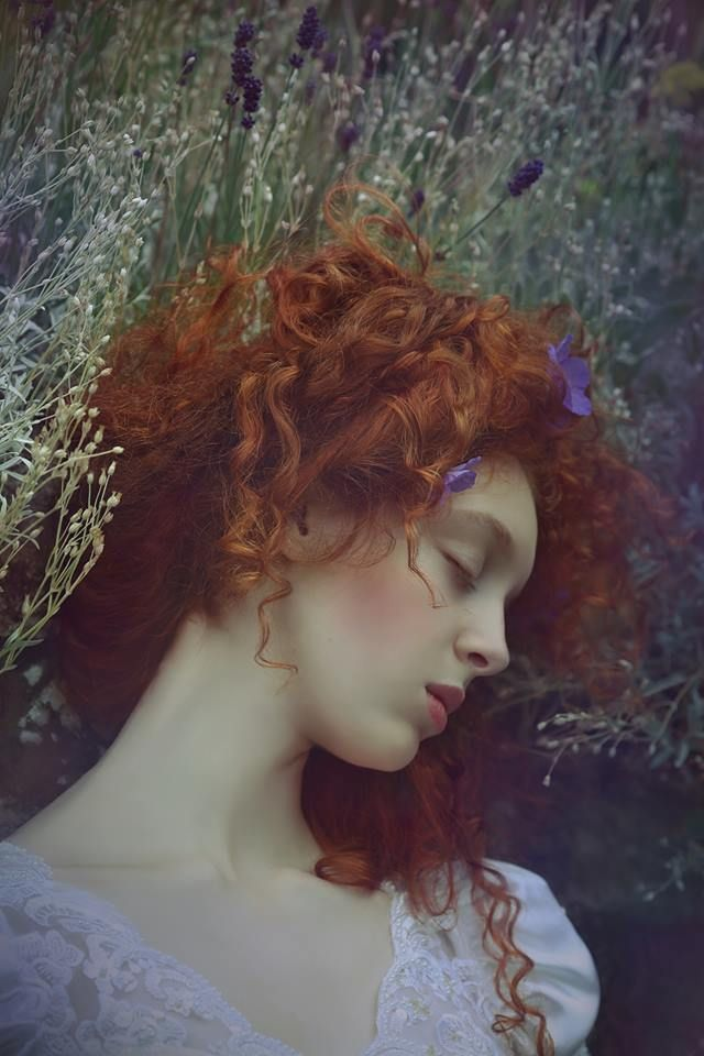 ╭⊰✿ .¸¸.Beautiful Shades of Color ~In the lavender field~ Lavender Lady