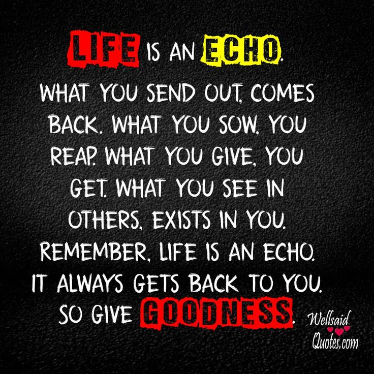 Life Is An Echo Quote Amazing 58 Best Life Quotes Images On Pinterest  Cats Classy People And