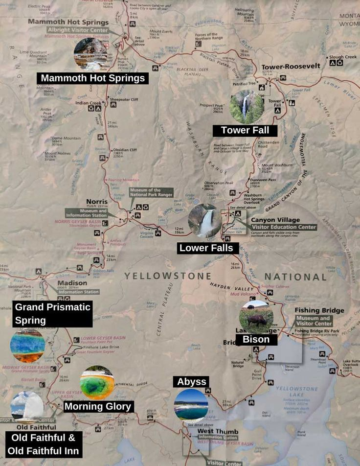 The top things to do in Yellowstone (plus map and