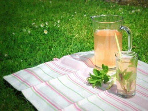 Selbstgemachte Rhabarber-Limonade - Eine erfrischende rosa Limo stillt den Durst in der heißen Jahreszeit! Am besten schmeckt die Limo mit Eiswürfeln und frischer Minze serviert.