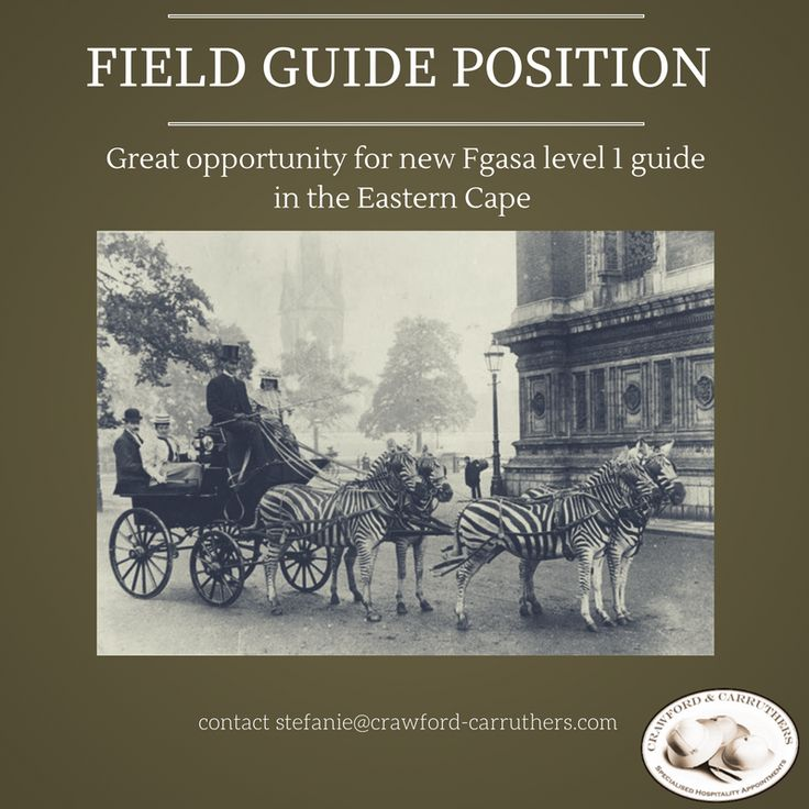 #crawfordcarruthers has a new entry level #fieldguidejob available for #fieldguides