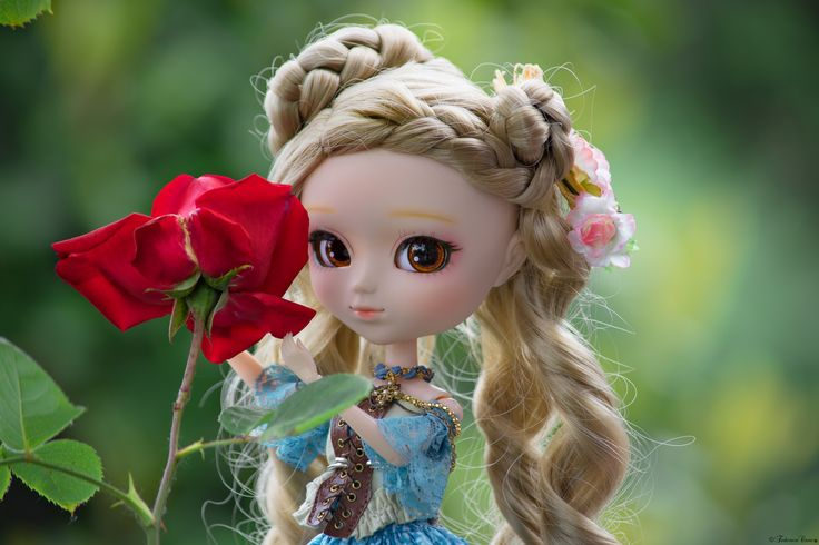 Red Rose and Pullip Hino <3