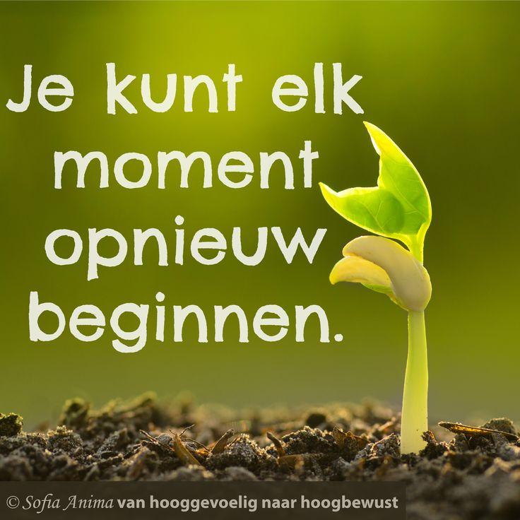 Je kunt elk moment opnieuw beginnen. Sofia Anima, praktijk voor hooggevoelige mensen www.sofia-anima.nl
