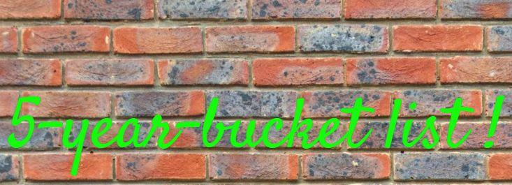 BUCKET LIST, LA MIA VERSIONE PERSONALIZZATA: 5-YEAR-BUCKET LIST