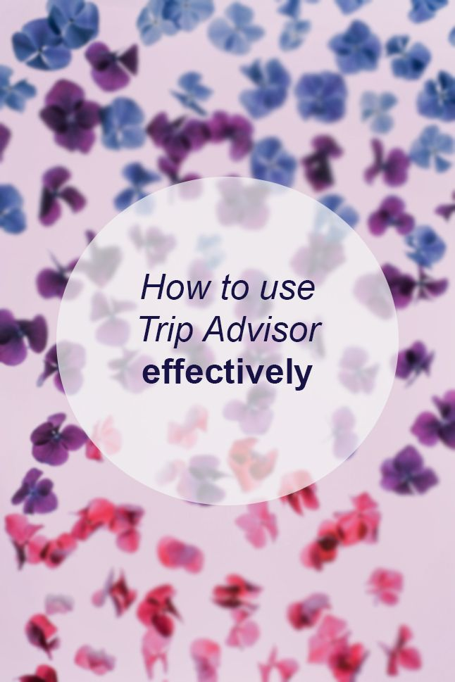 How to use Trip Advisor effectively // Miss Sweet Nothings