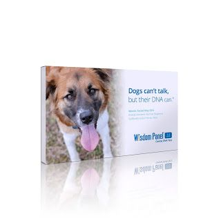 #ad Wisdom Panel 3.0 Canine DNA Test