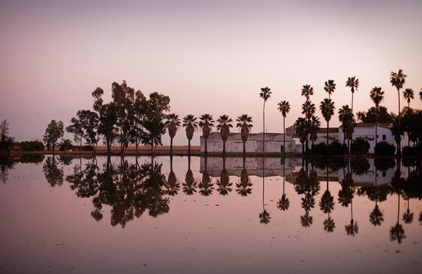 Buda Island in Delta de l'Ebre #terresdelebre  #catalonia #spain