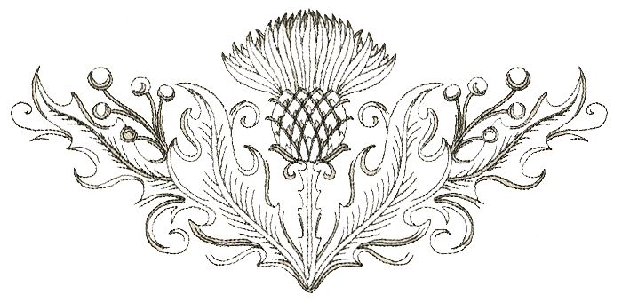 http://www.justinstitches.com/Images/Embroidery/Stock%20Designs/Green%20Days/Thistle.jpg