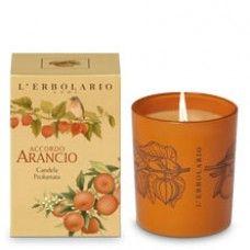 Accordo Arancio illatgyertya Mandarin, keserű narancs és lampionvirág-kivonattal - Rendeld meg online! Parfüm és kozmetikum család a Lerbolario naturkozmetikumoktól