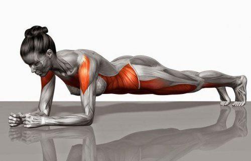 Ejercicio: desafío del plank de 28 días para reducir vientre - Mejor con Salud