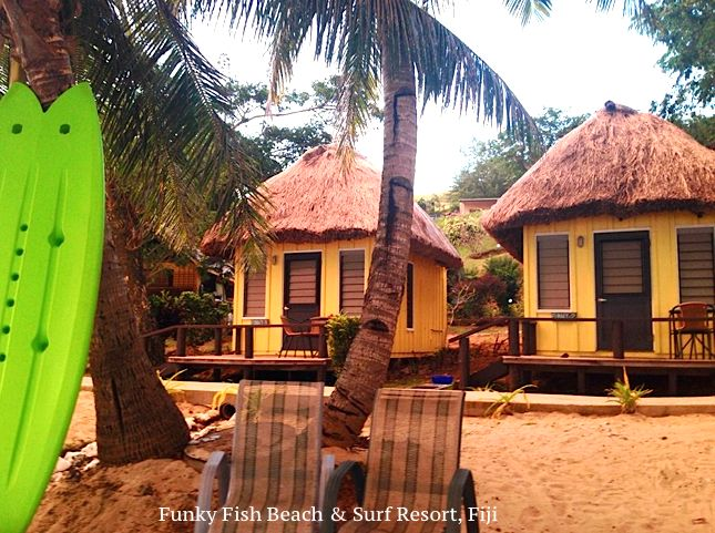 Our Beachfront bures offers you a truly unique and an unforgettable experience of island life. Waking up to the sounds of the sea, cool breeze and swaying palm trees right outside your door step. It's truly out of this world, don't you think?